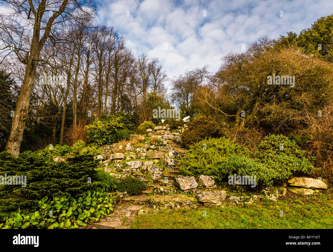 Stone steps through the garden at Polesden Lacey, Surrey, UK - Stock Image