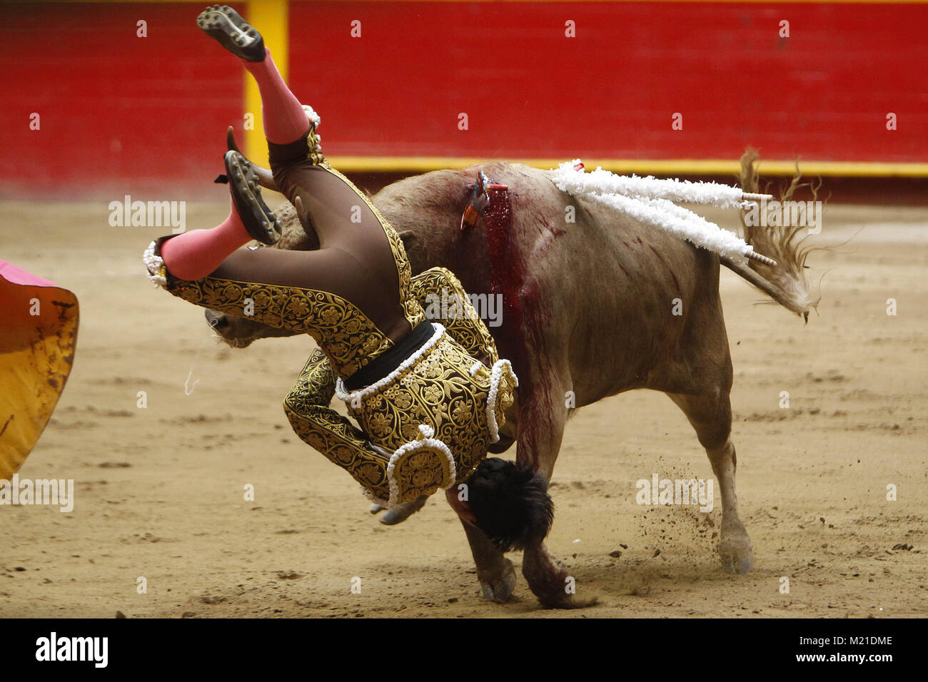 Medellin, Colombia. 3rd Feb, 2018. Colombian bullfighter David Martinez gets gored during the second bullfight of - Stock Image