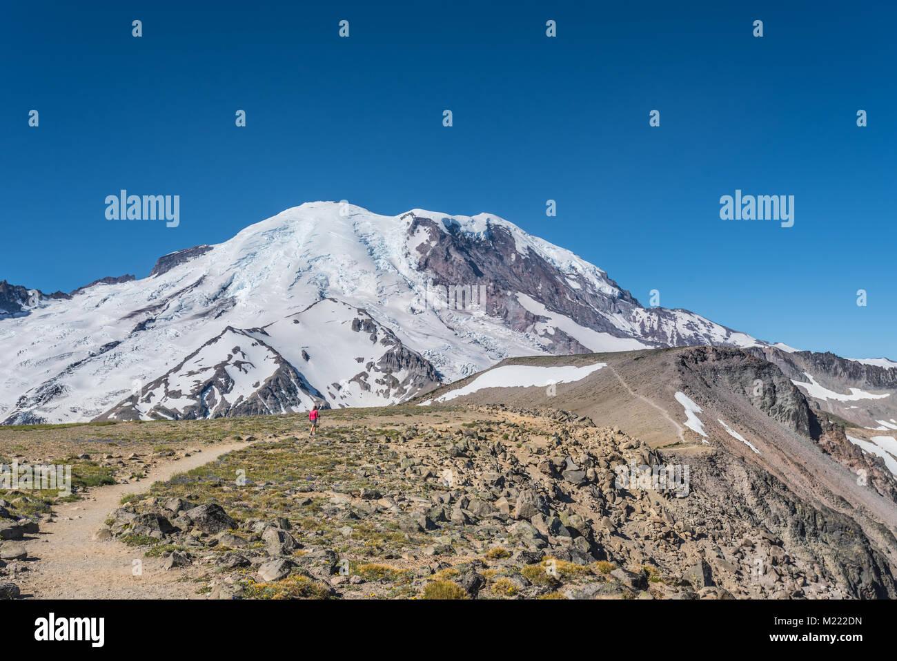 Woman Hikes Burroughs Mountain Trail underneath Mount Rainier - Stock Image