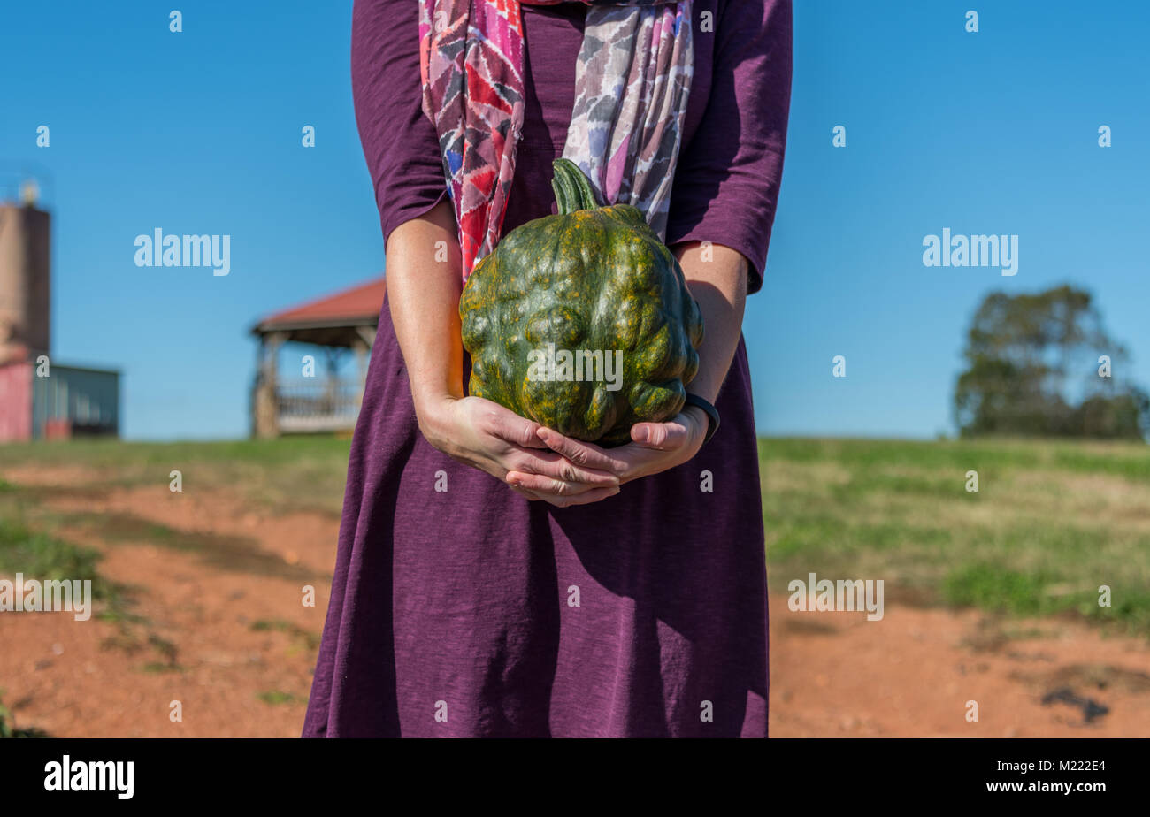 Woman Holds Bumpy Green Heirloom Pumpkin on Farm - Stock Image