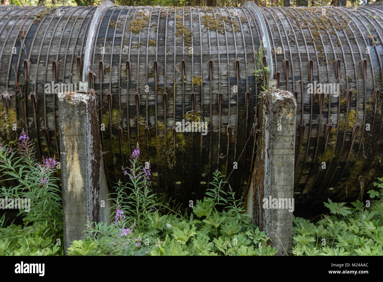 Wood Stave Pipe at Toketee Falls transports water - Stock Image