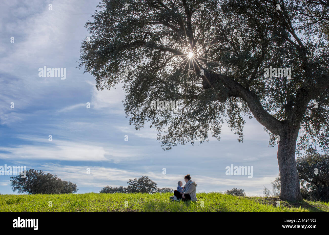 Mother and toddler son playing under acorn tree. Enjoying nature in family concept - Stock Image