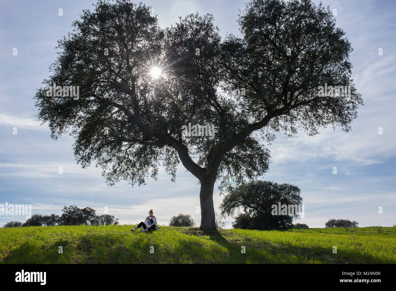 Mother rocking a child in her arms under acorn tree. Enjoying nature in family concept - Stock Image