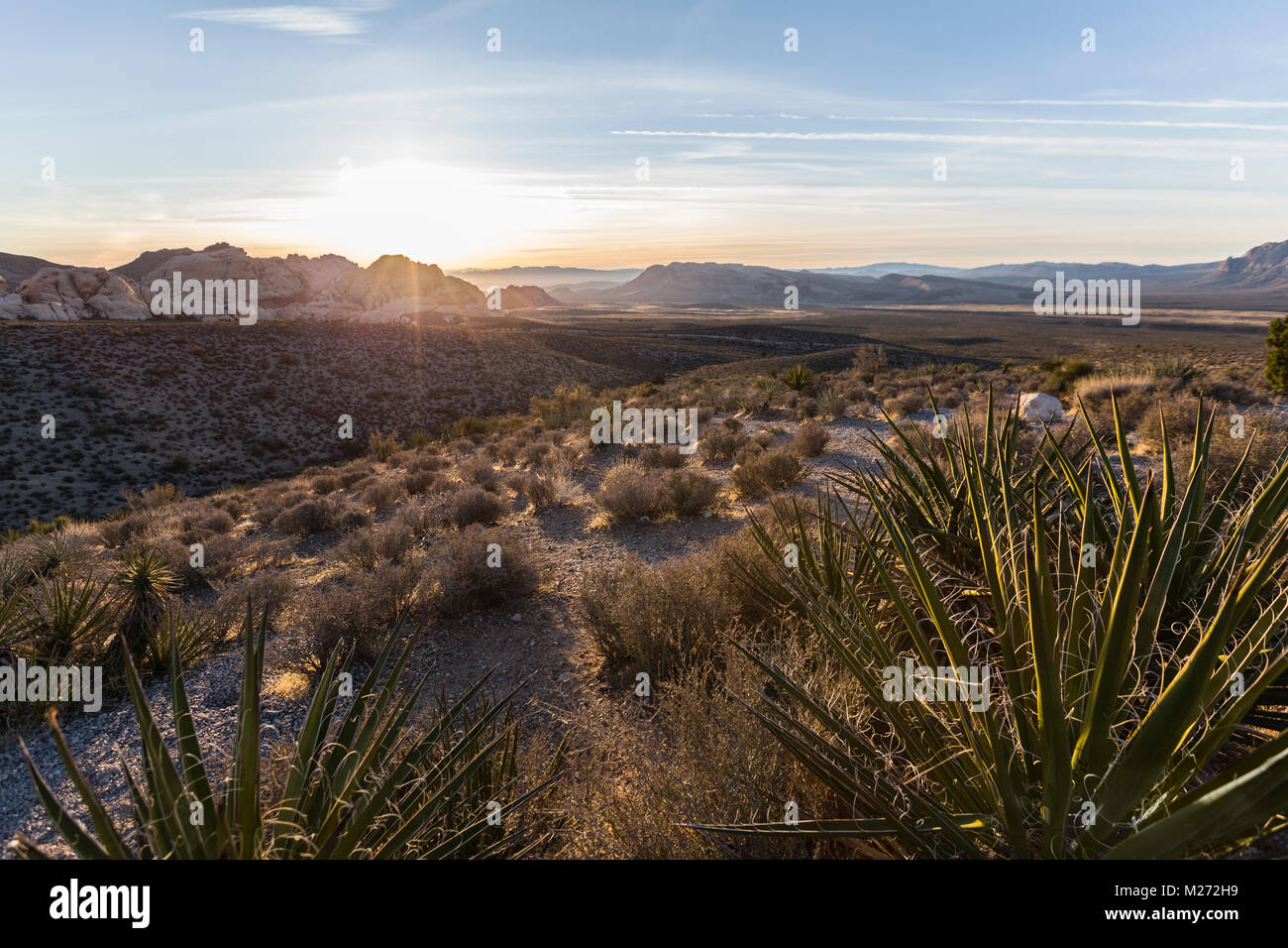 Dawn view from scenic loop overlook at Red Rock Canyon National Conservation Area near Las Vegas Nevada. - Stock Image