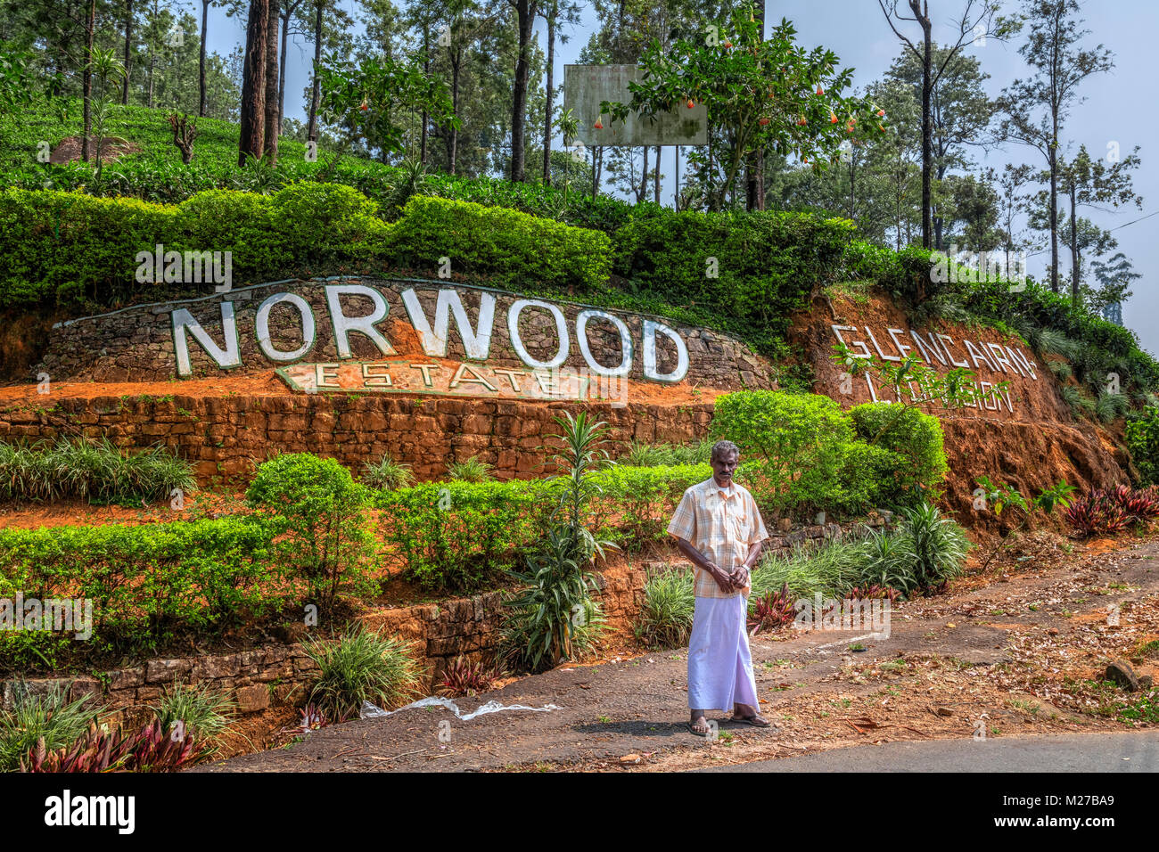 norwood asian personals Norwood sawmills is the leading global manufacturer of portable sawmills and mobile forestry equipment click or call 1-800-567-0404 to learn more.