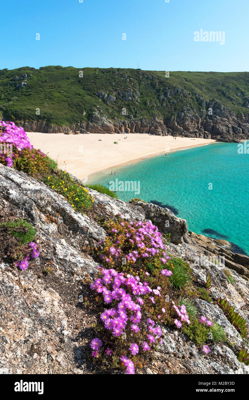 the secluded cove at porthcurno in cornwall, england, uk. - Stock Image