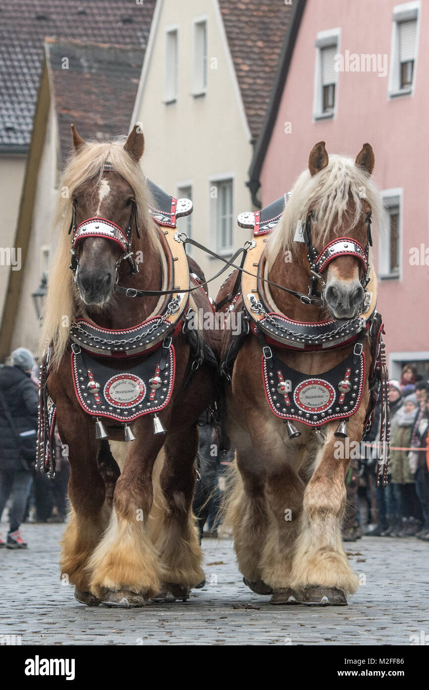 Berching, Germany. 07th Feb, 2018. Horses are being led to the traditional 'Berchinger Rossmarkt' (lit. - Stock Image