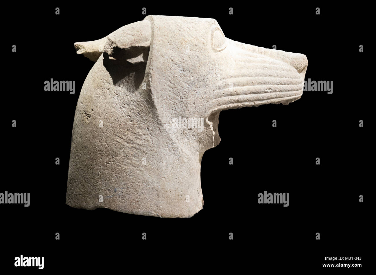 Jaen, Spain - December 29th, 2017: Wolf's head of Heroic Shrine of El Pajarillo, Huelma, Jaen at Iberian Museum - Stock Image