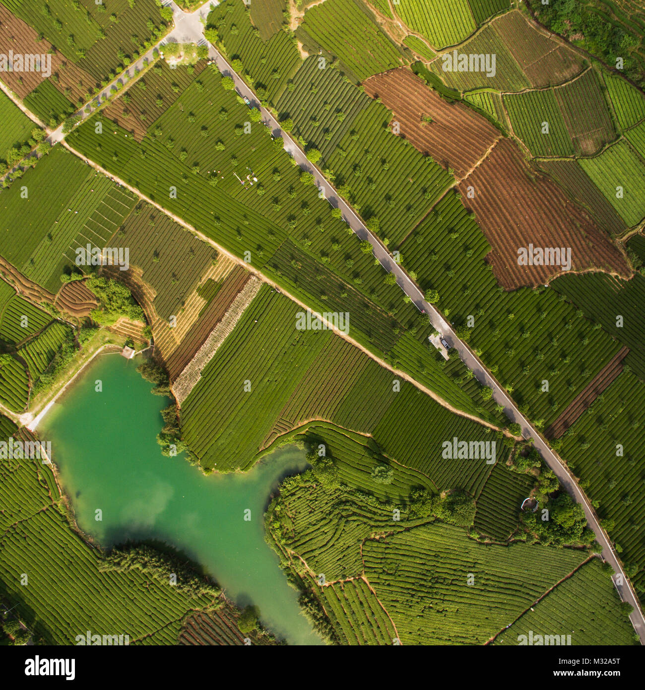 Aerial - Stock Image