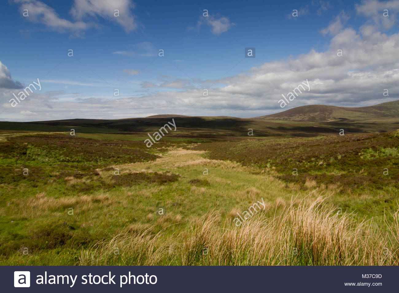 Turf land... - Stock Image