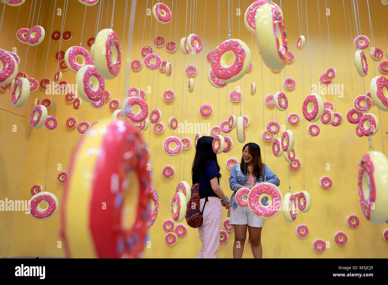 Pasay City, Philippines. 11th Feb, 2018. People take a tour inside the Donut Room of the Dessert Museum in Pasay - Stock Image
