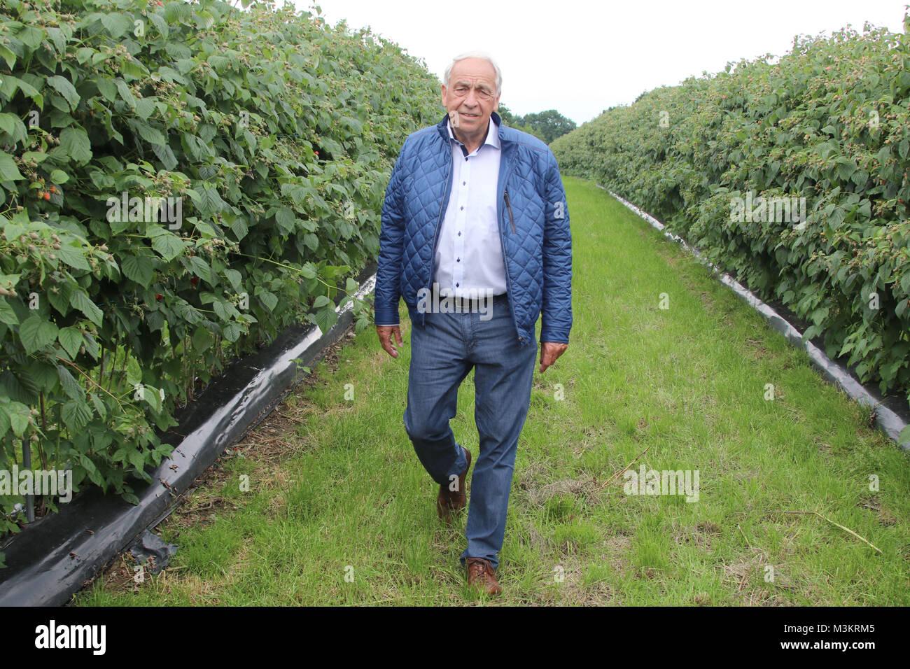 Enno Glantz, Start der Himbeer-Saison, Erdbeerhof Glantz, Hamburger Str. 2a, 22941 Delingsdorf, 27.06.2016 - Stock Image