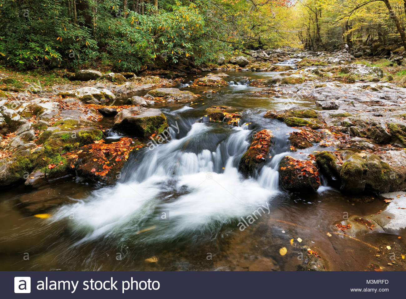 Little River in Tremont, Great Smoky Mountains National Park - Stock Image