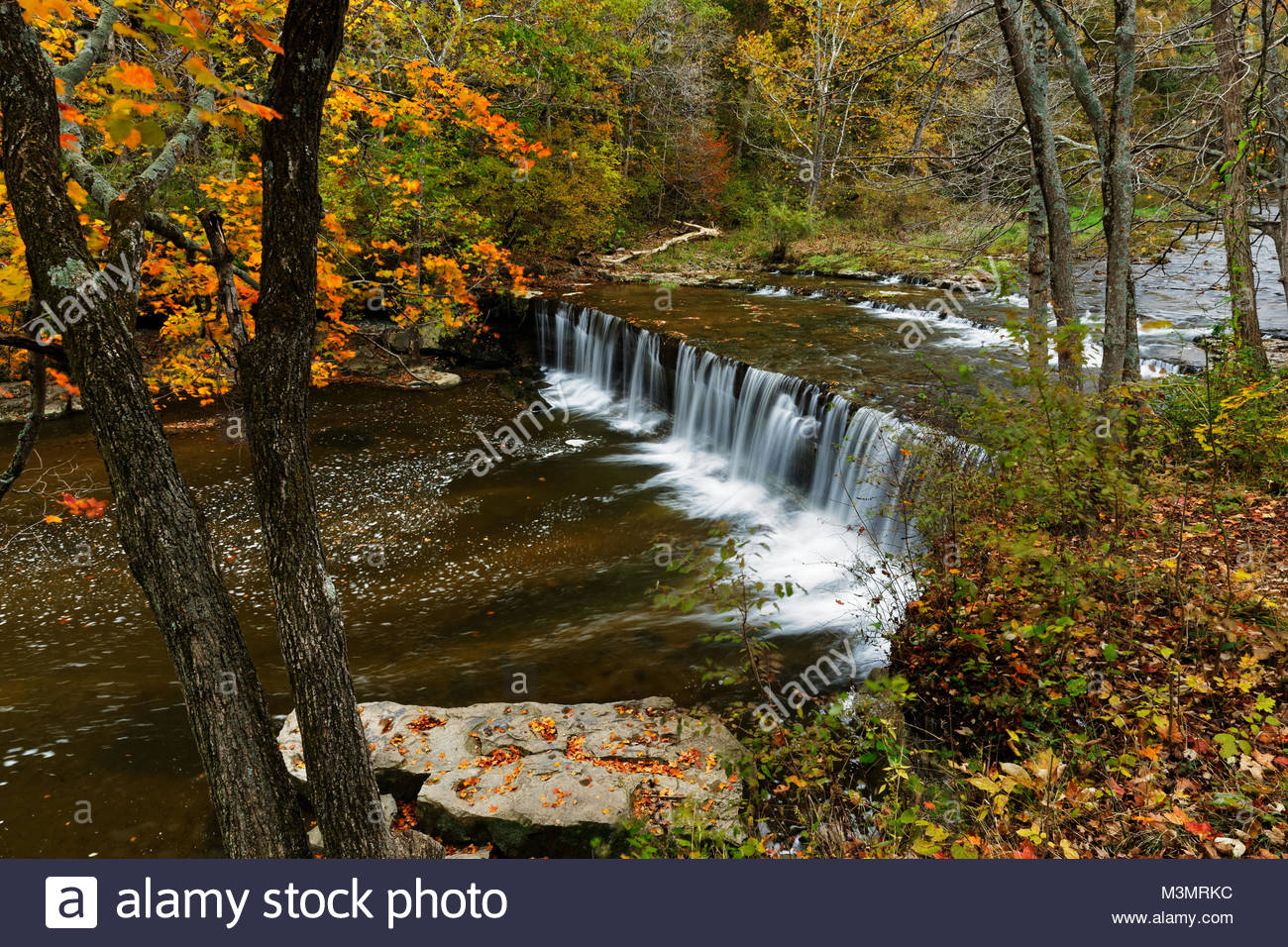 Anderson Falls in autumn, Columbus, Indiana - Stock Image