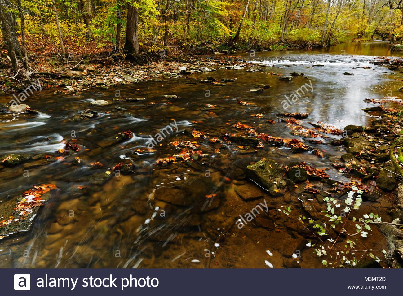 Autumn Creek, Anderson Falls Park, Columbus, Indiana - Stock Image