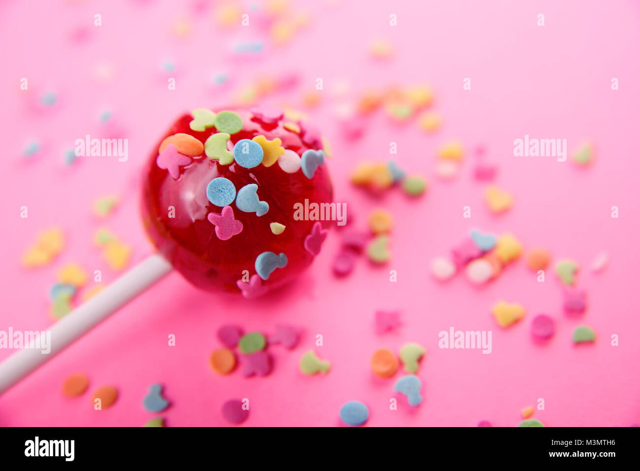pink round lollipop close-up on pink background. - Stock Image