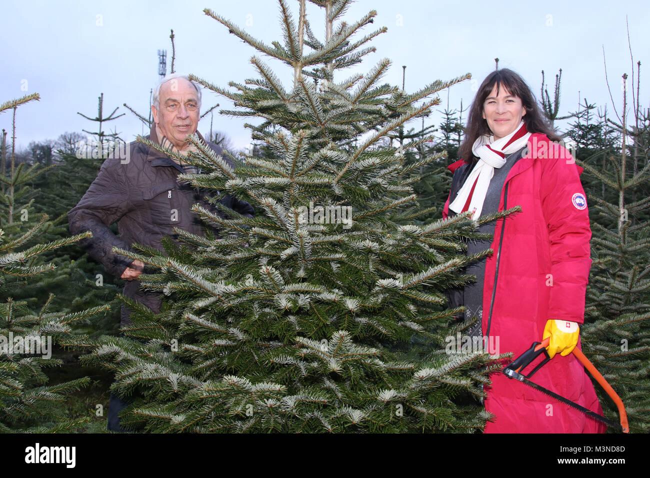 Sandra Maahn, Enno Glantz, Start des Tannenbaumselbstsaegens auf dem Erdbeerhof Glantz,Hamburg Delingsdorf, 11.12.2016 - Stock Image