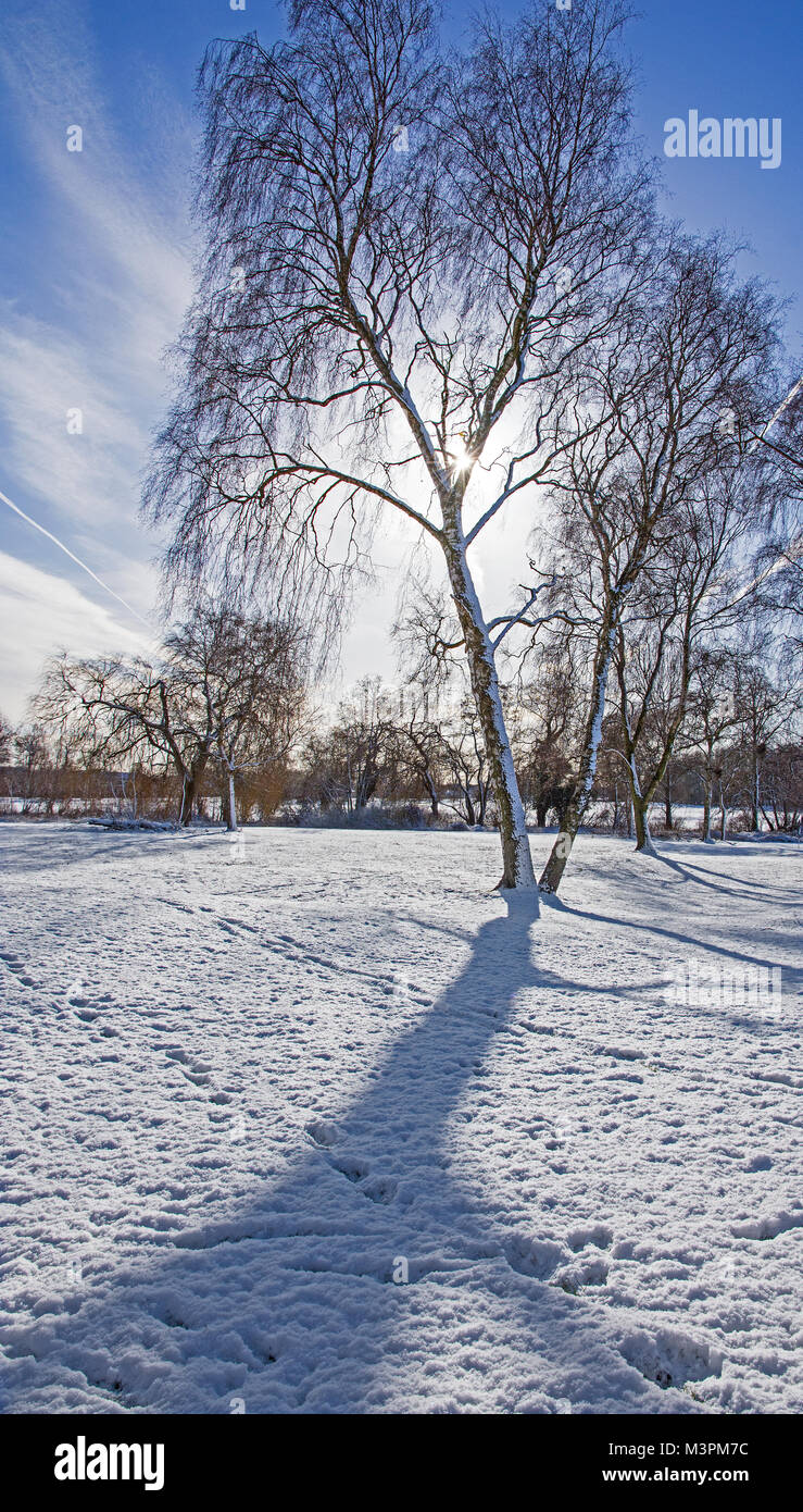 Lichfield Staffordshire England on Monday 12th February 2018 Sunshine fresh snow and shadows in Beacon Park Lichfield - Stock Image