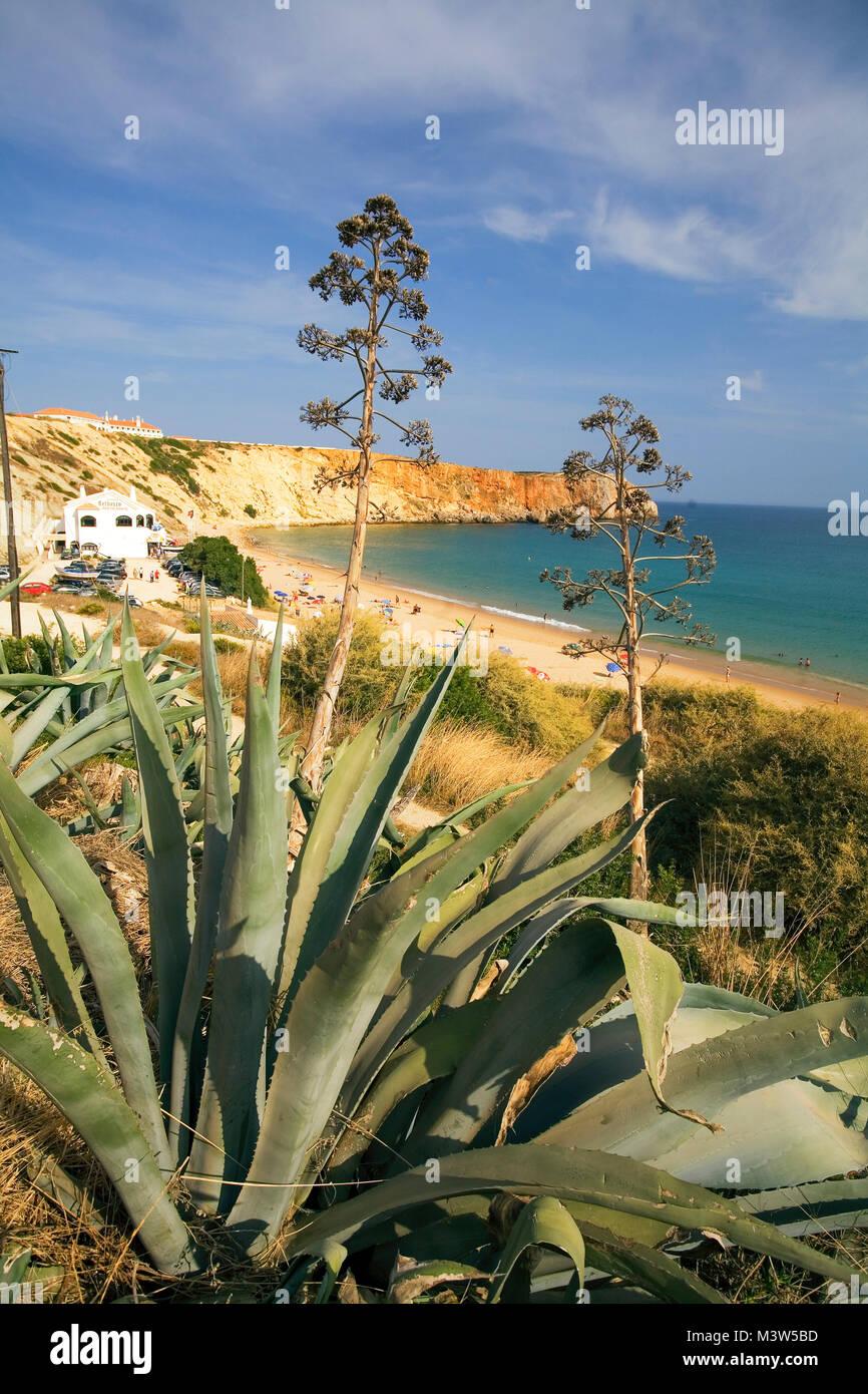 Portugal Algarve Atlantikc coast  beach Praia de Mareta Sagres| Portugal, Atlantik Kueste  Badestrand , Algarven, - Stock Image