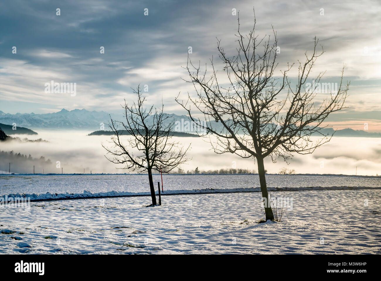 snow landscape Uertliberg, Uto Kulm, swiss alps, canton Zurich, Switzerland - Stock Image