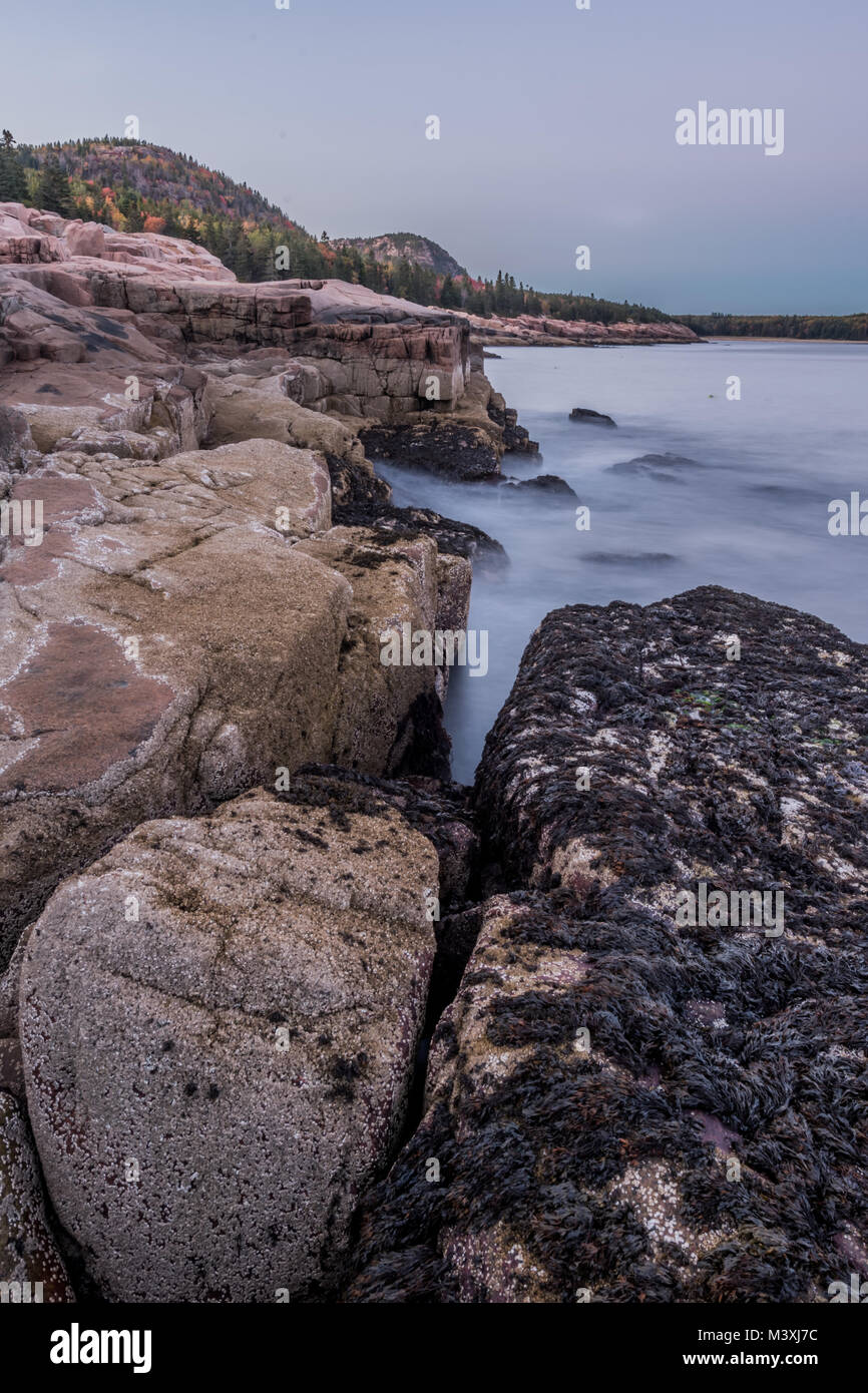 Looking Up the Rocky Coast of Acadia National Park in autumn - Stock Image
