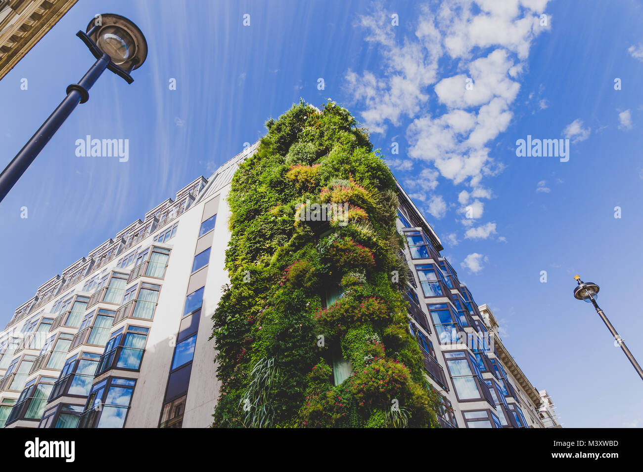 LONDON, UNITED KINGDOM - August, 21th, 2015: growing plant installation along the exterior of The Athenaeum Hotel - Stock Image