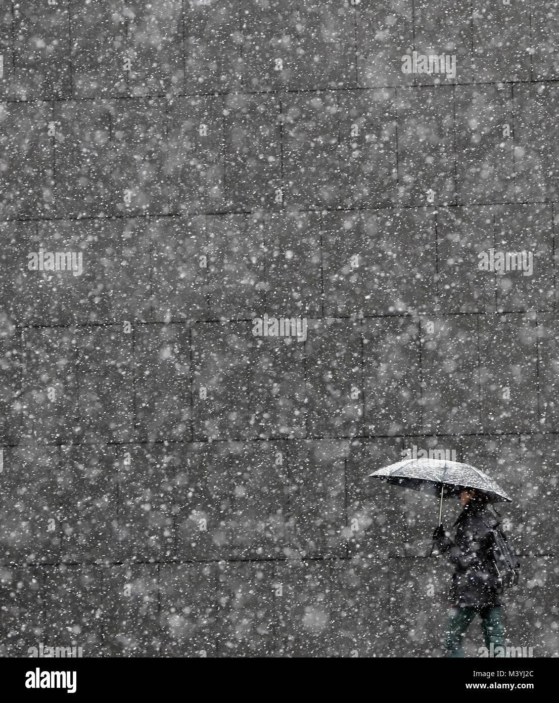 Pamplona, Spain. 13th Feb, 2018. A man goes for a walk during a snowfall in Pamplona, northerm Spain, 13 February - Stock Image