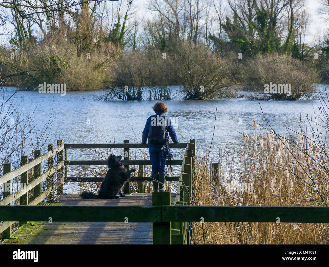 lady-looking-out-over-lake-from-viewpoin