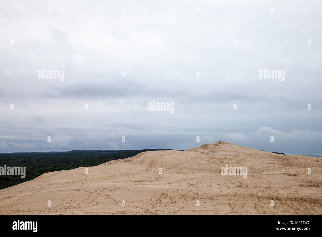 Panorama of the Pilat Dune (Dune du Pilat) during a cloudy afternoon with a pine forest in background. Pilat, or - Stock Image