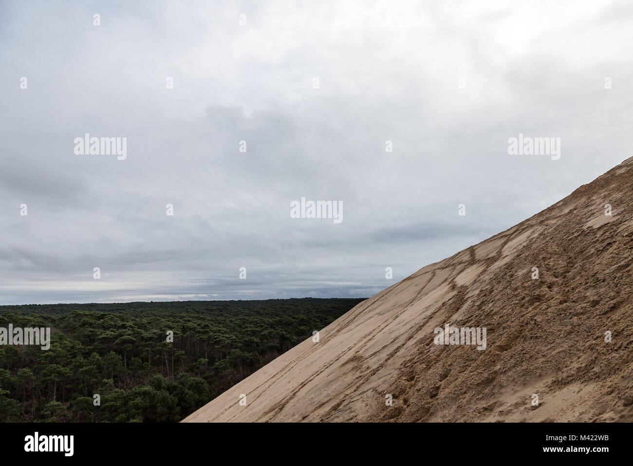 Panorama of the Pilat Dune (Dune du Pilat) during a cloudy afternoon with the Landes Forest (Foret des Landes), - Stock Image