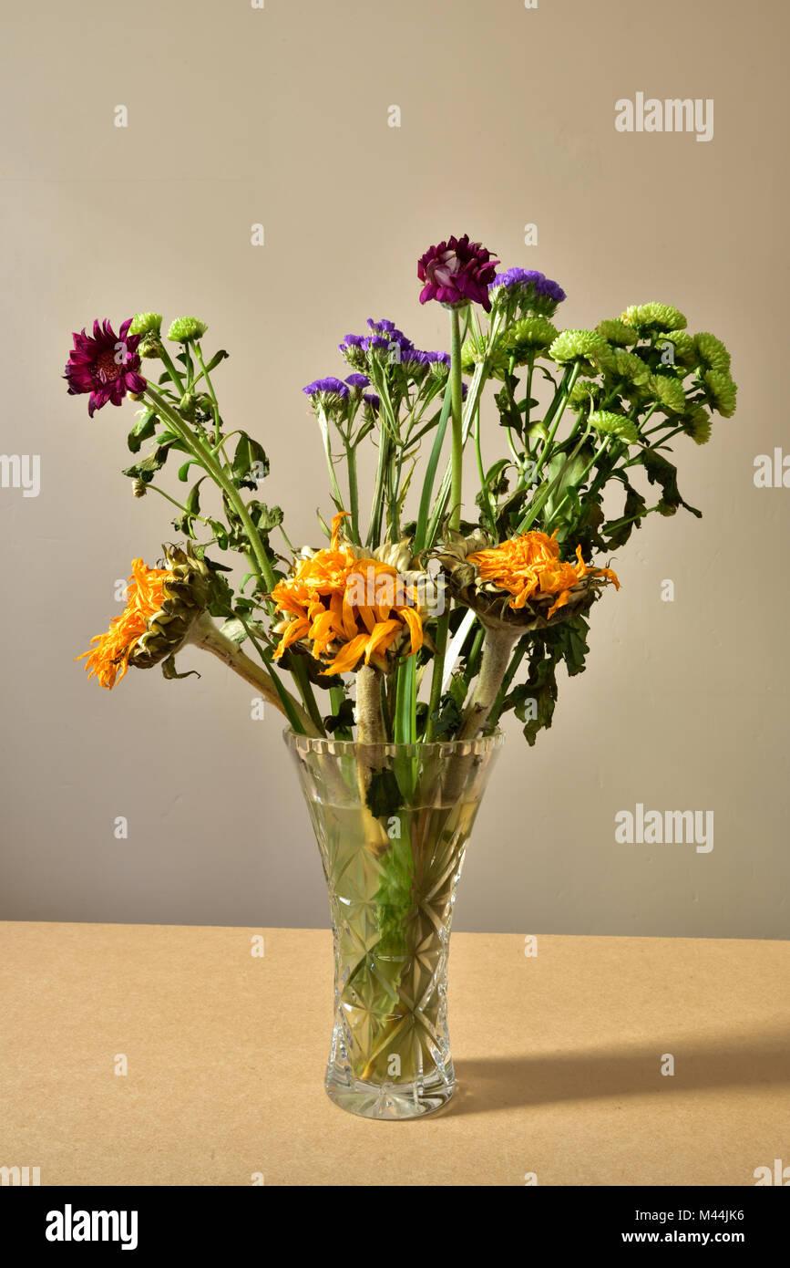 Dead Flowers Vase Stock Photos Amp Dead Flowers Vase Stock