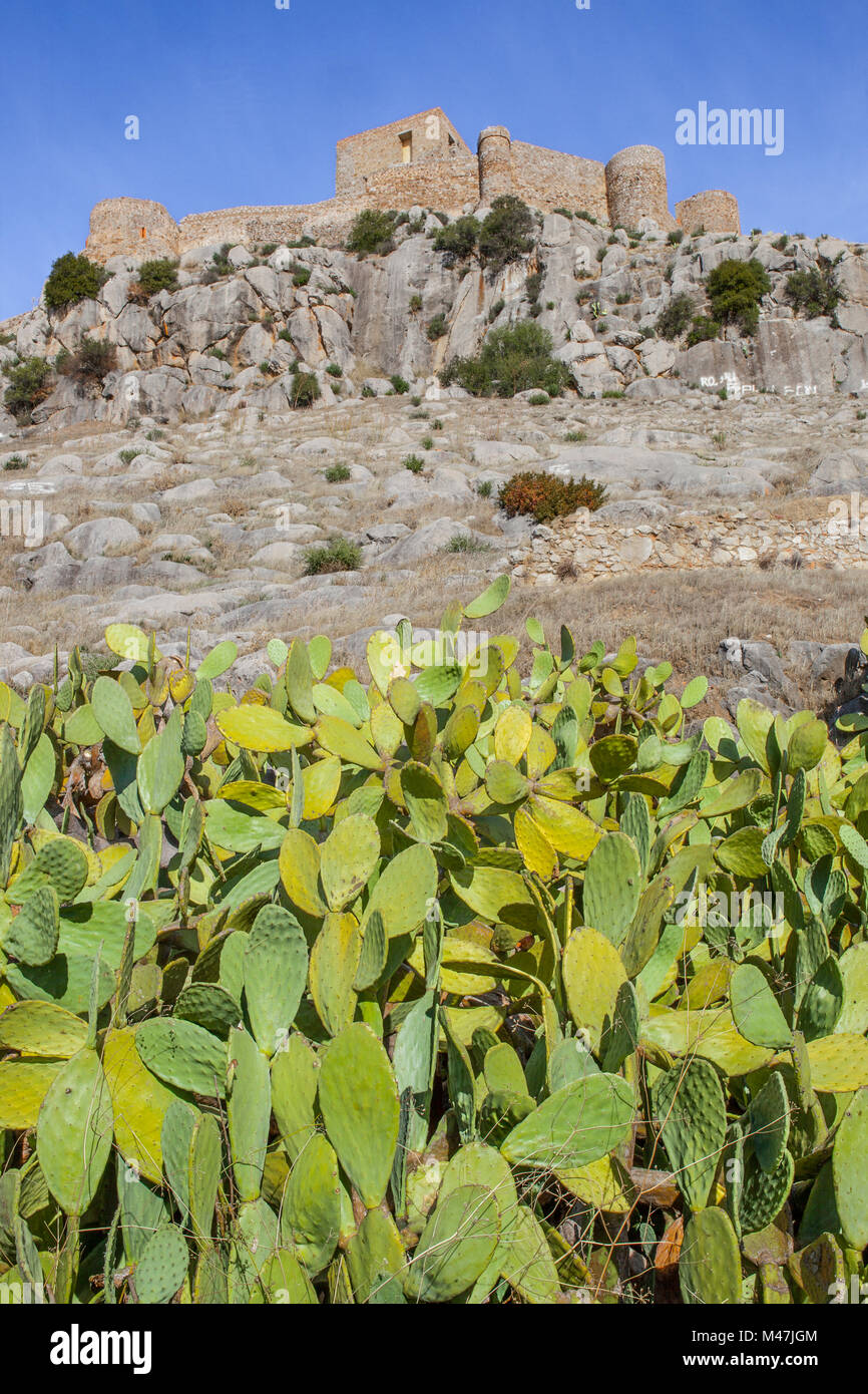 High limy rock of Castle of Belmez with prickly-pear cactus, Cordoba, Spain - Stock Image