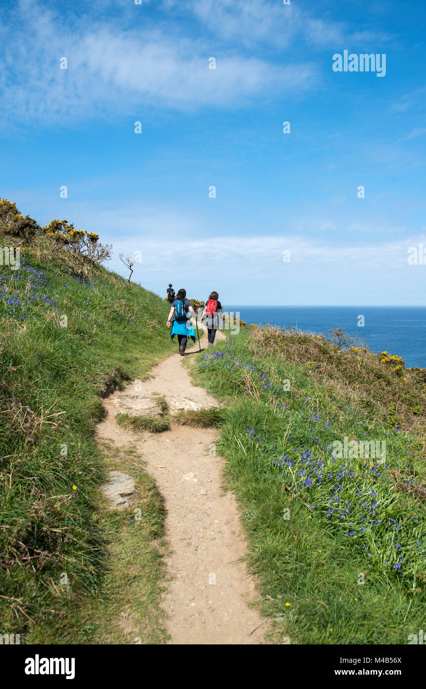 People walking along the South West Coast Path in Cornwall, England, UK - Stock Image
