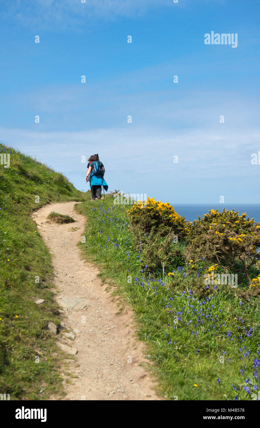 Two woman walking along the South West Coast Path in Cornwall, England, UK - Stock Image