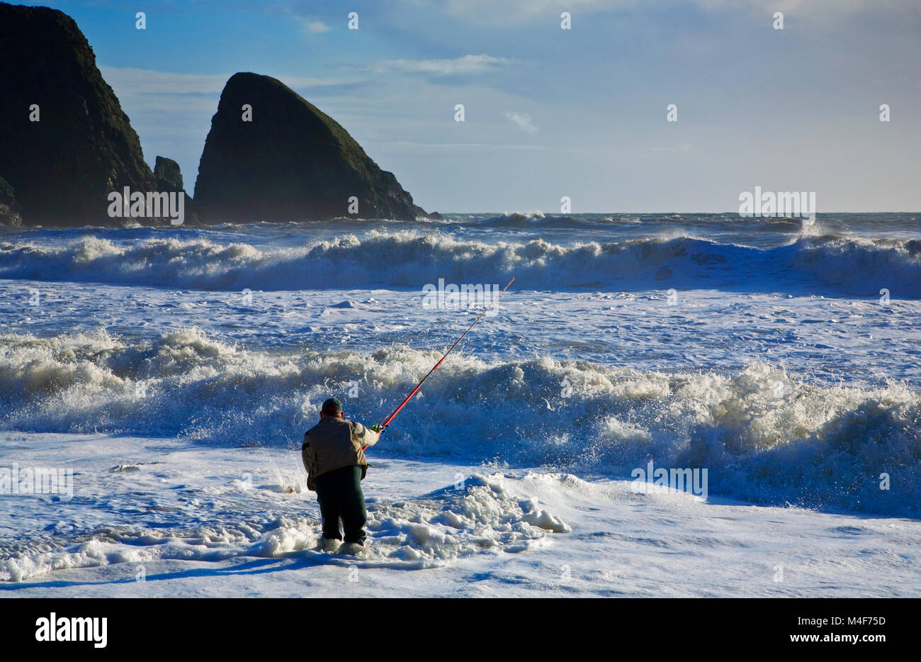 Sea Angling for Bass at Ballydowane Beach, The Copper Coast, County Waterford, Ireland - Stock Image