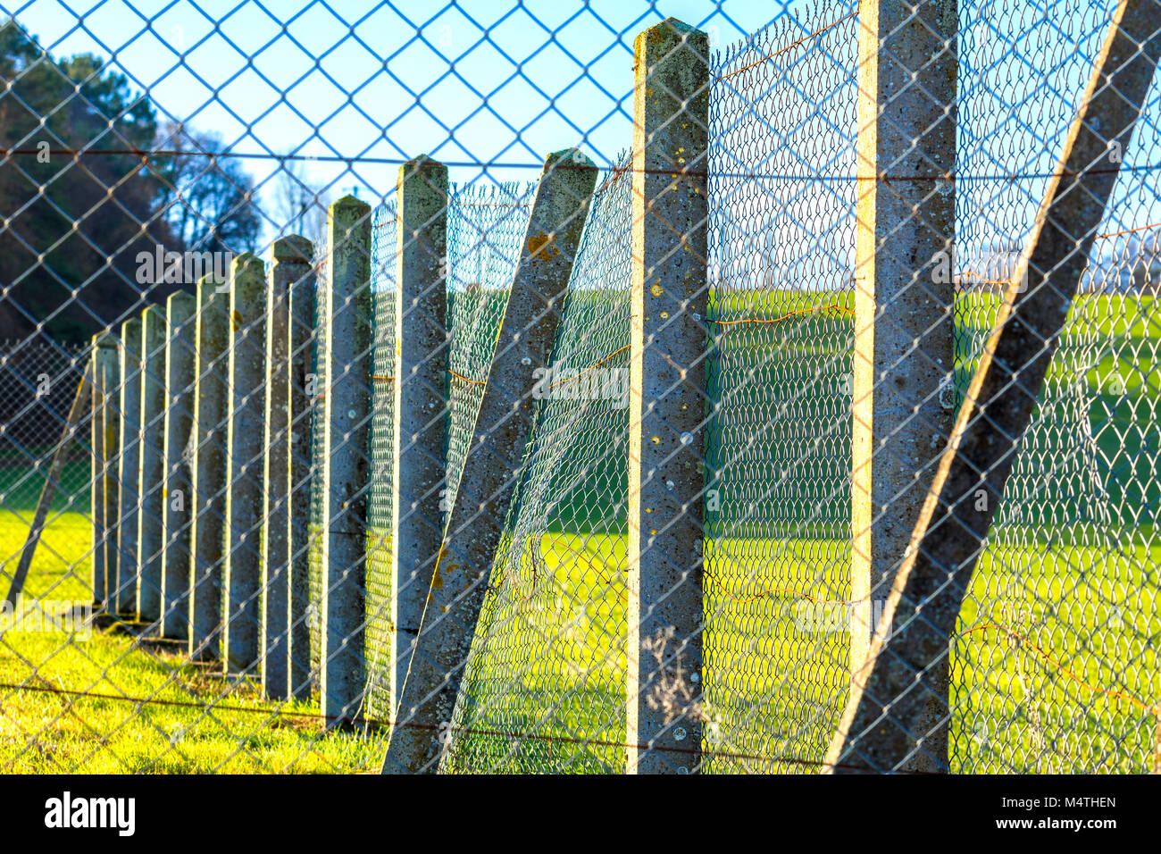 Wire netting on concrete posts. - Stock Image