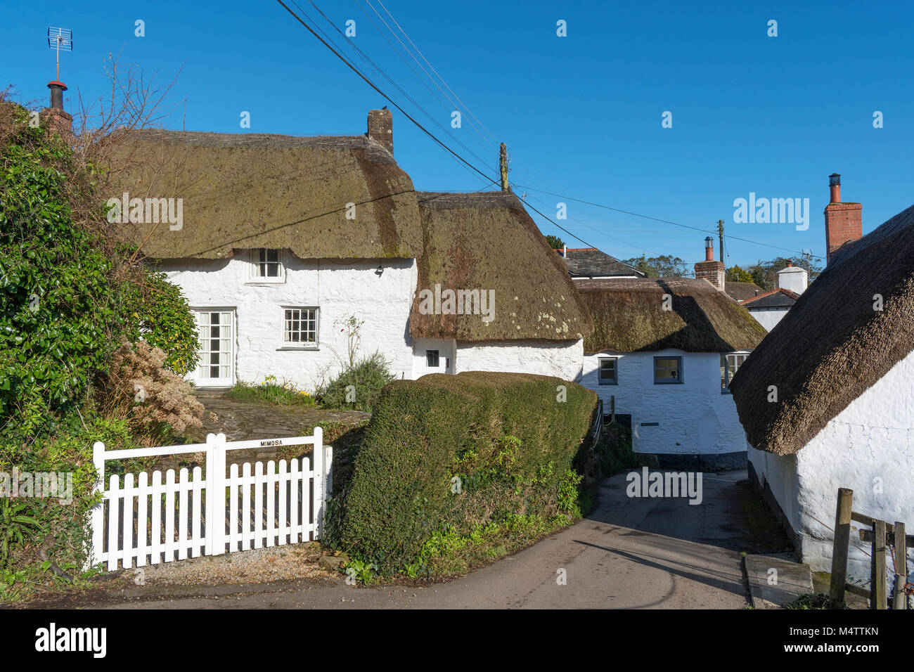 thatched cottages in helford village, cornwall, england, britain, uk. - Stock Image