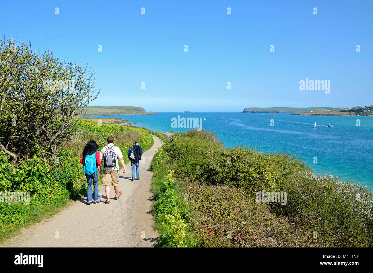 people walking the southwest coast path near padstow in cornwall, england, britain, uk. - Stock Image