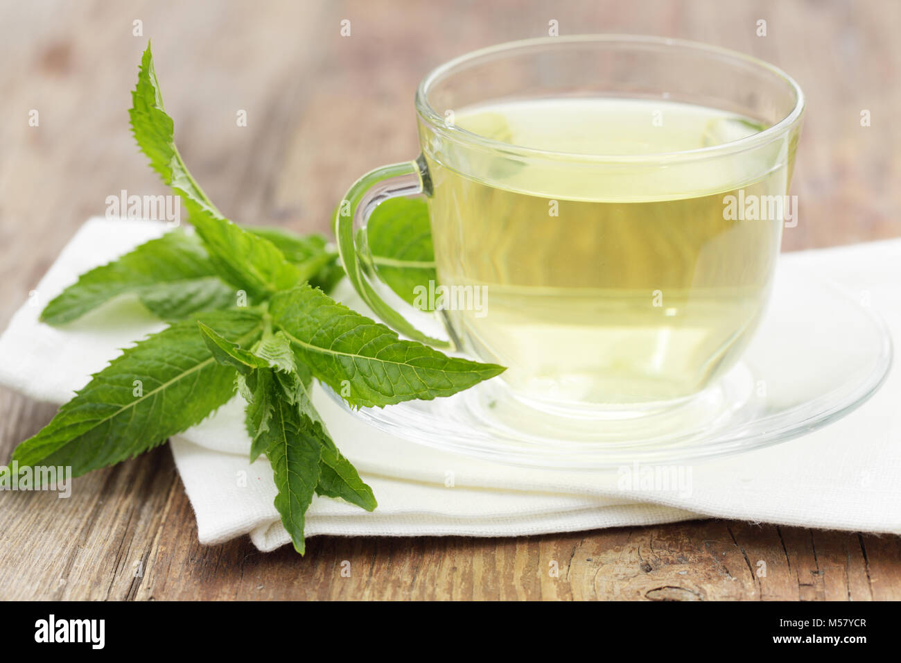 Cup with mint tea and a peppermint - Stock Image