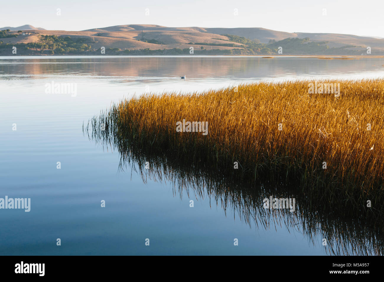 Landscape with bay and open spaces of marshland, hills in the distance. - Stock Image