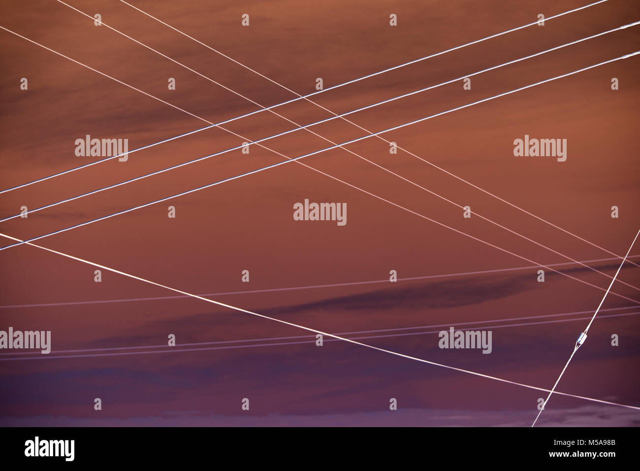Abstract of electrical utility wires extending across sky. - Stock Image