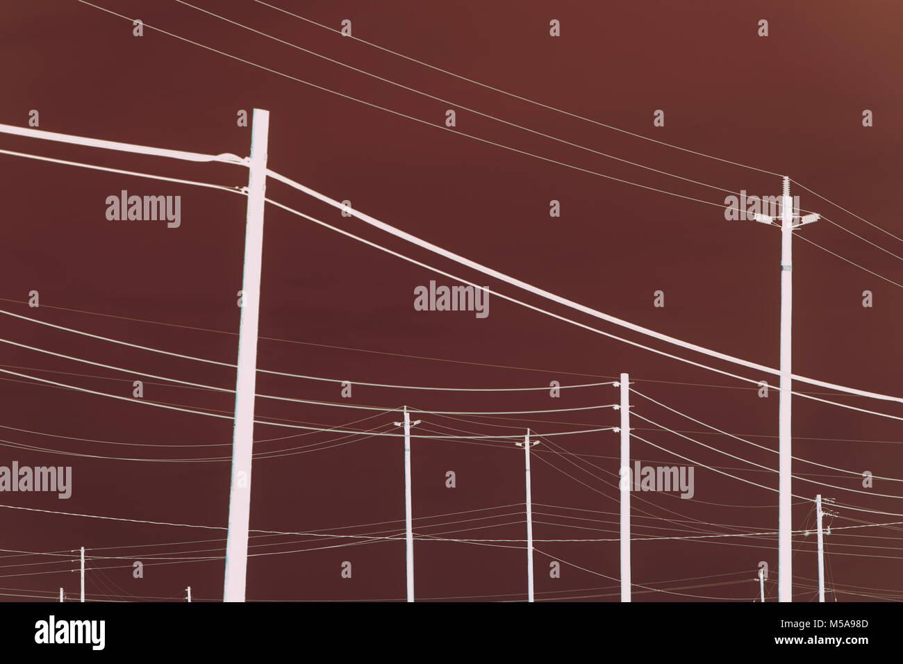 Abstract of power lines and telephone poles. - Stock Image