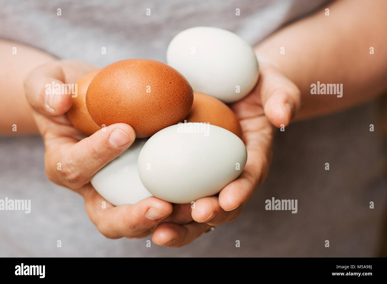 A woman holding hands full of fresh brown and white eggs. - Stock Image