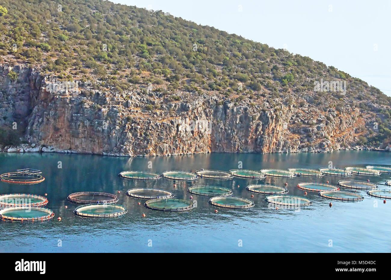 fish farm aquaculture stock photos amp fish farm aquaculture