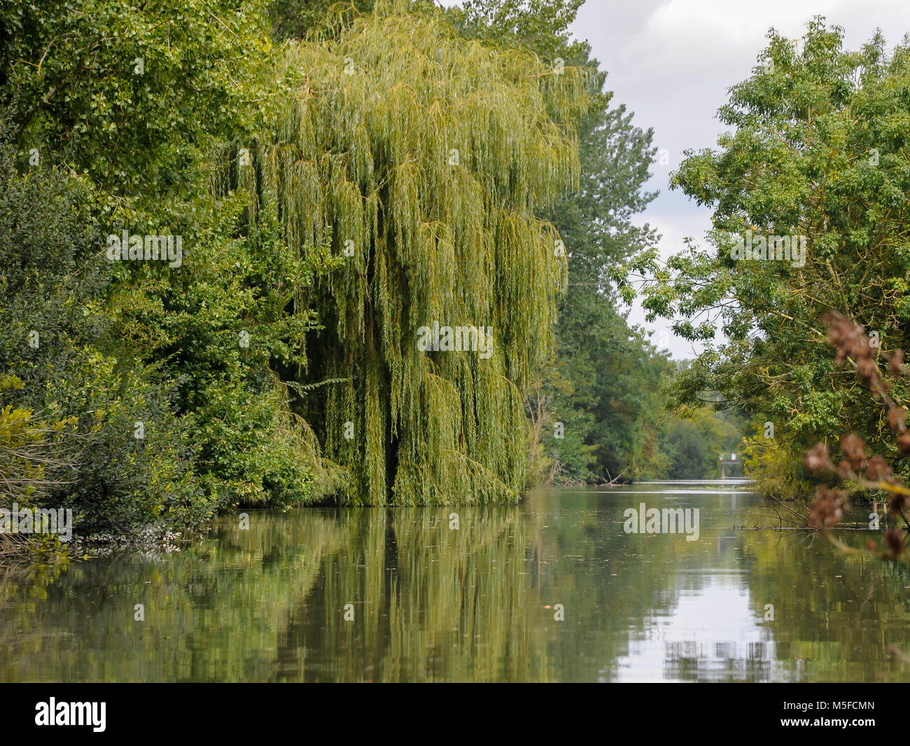 Marais Poitevin Regional Natural Park