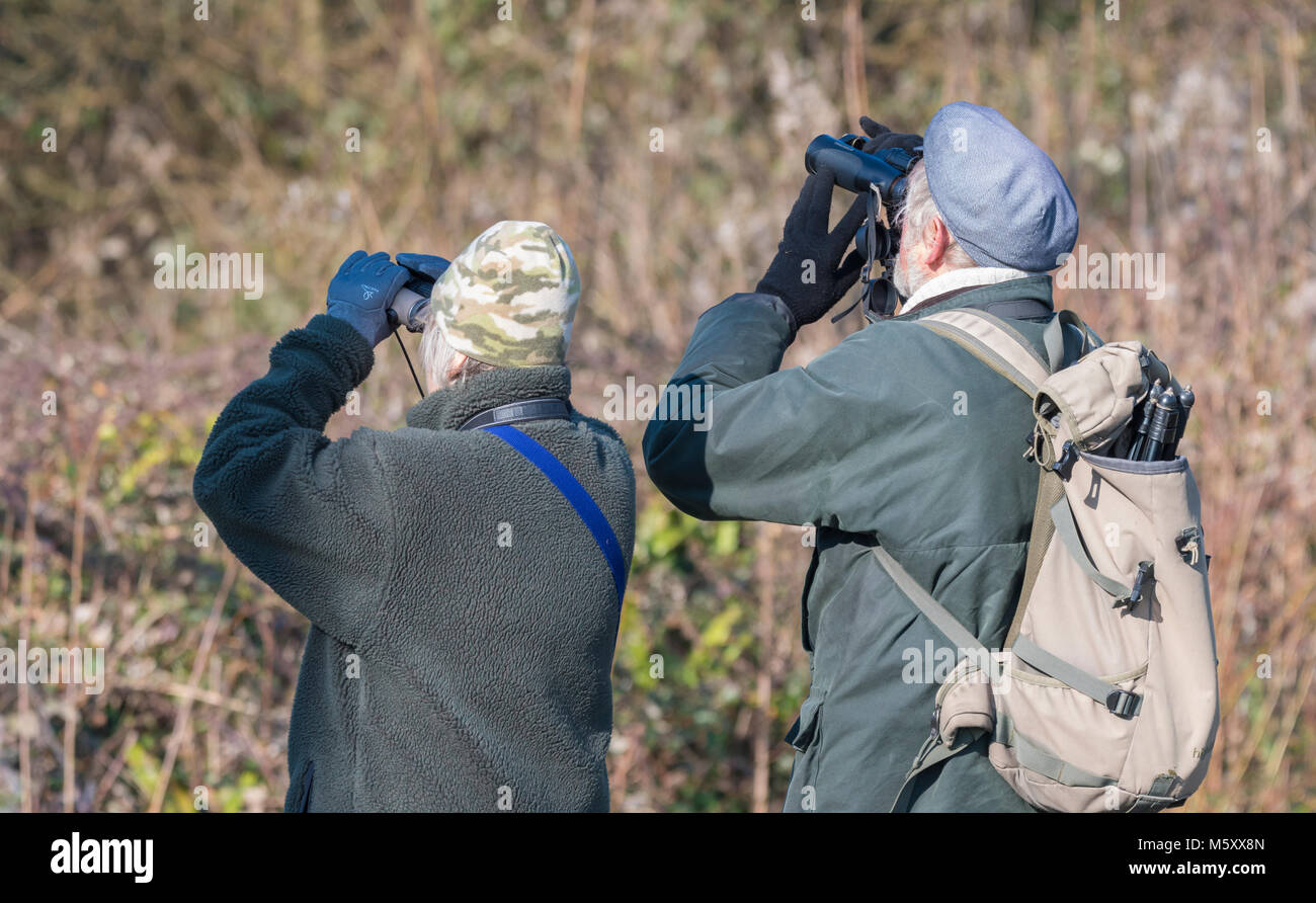 elderly-couple-birdwatching-looking-through-binoculars-senior-birdwatchers-M5XX8N.jpg