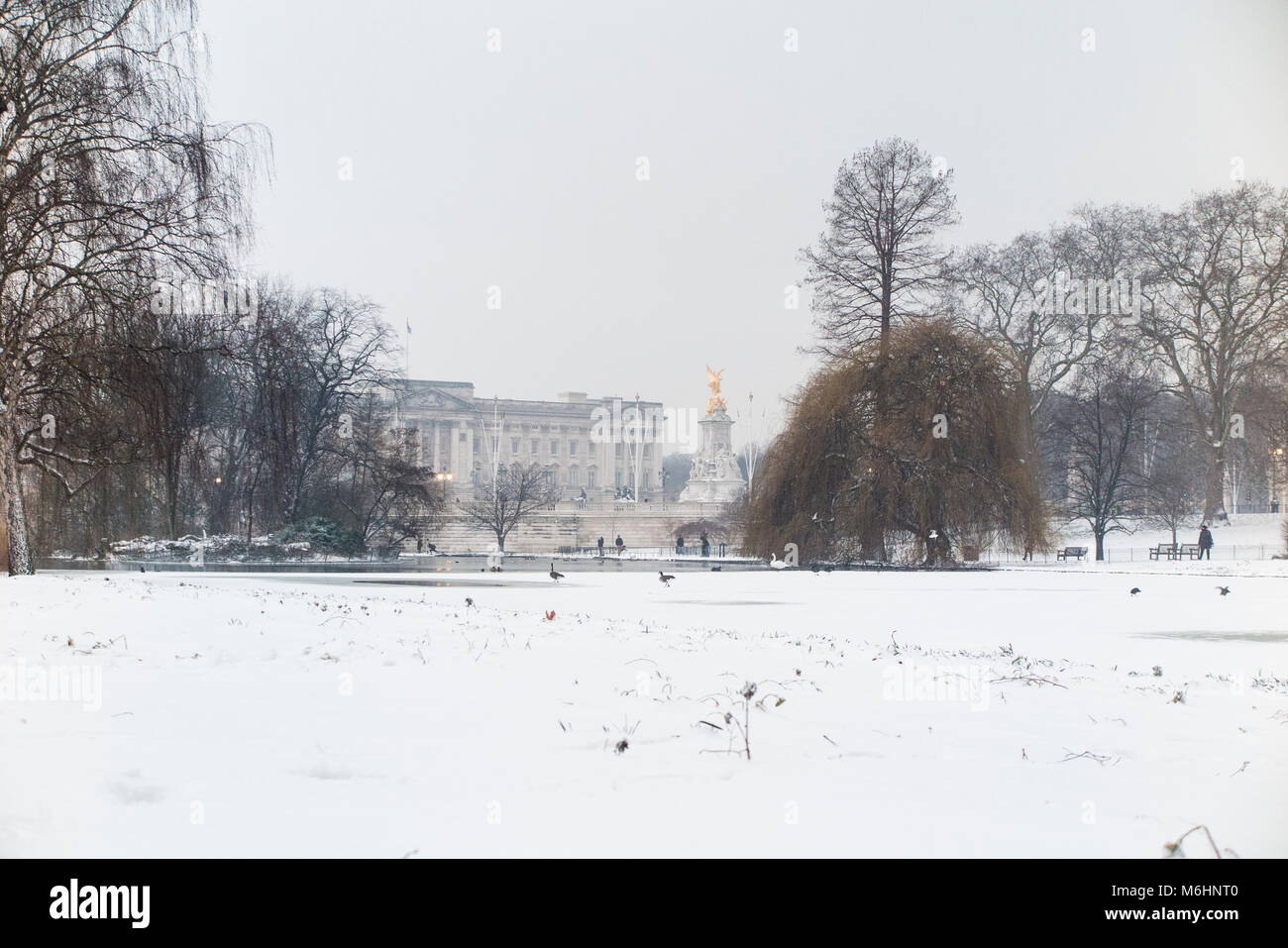 St James's Park and Buckingham Palace in the snow - Stock Image