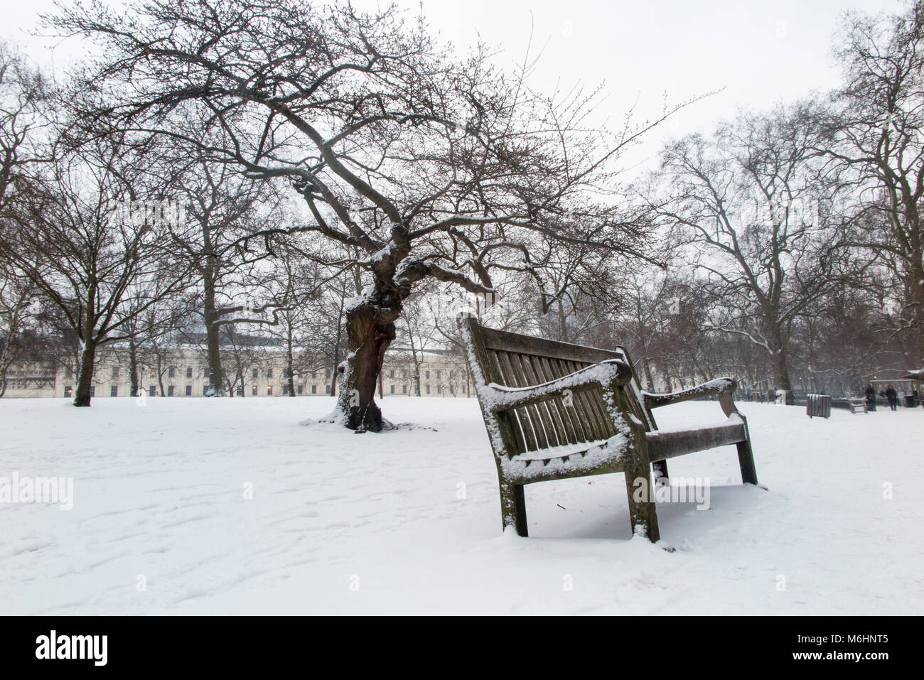 A snow covered bench and cherry tree in St James's Park, London - Stock Image