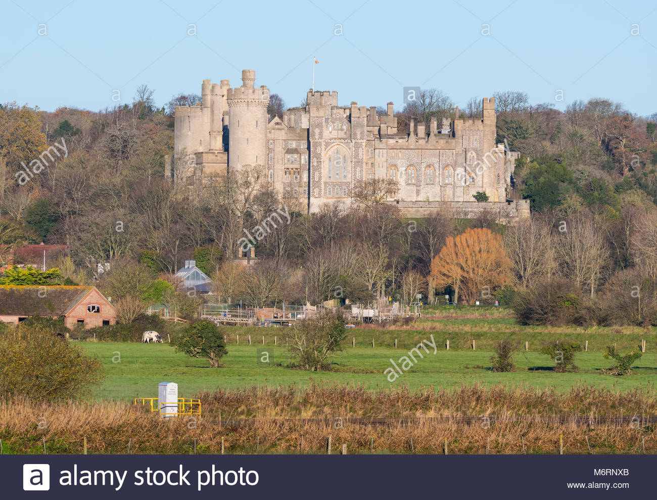 view-of-arundel-castle-view-from-fields-in-arundel-west-sussex-england-M6RNXB.jpg