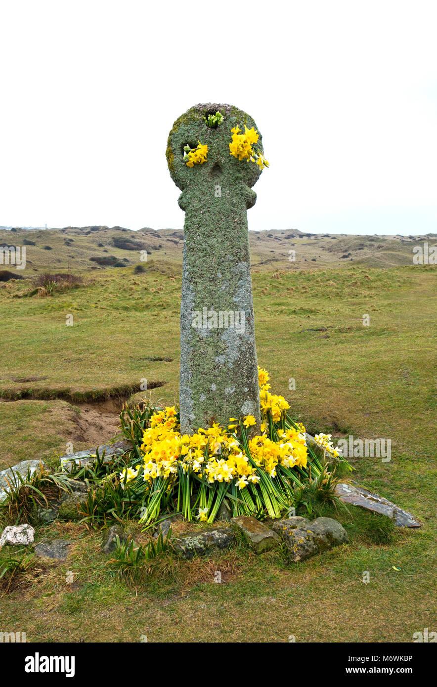 10th century stone cross dedicated to st.piran the patron saint of tin miners in cornwall, england, uk. - Stock Image